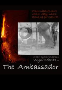 7a-poster_The Ambassador